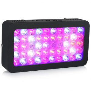 6-global-star-led-grow-light-300w-full-spectrum-plant-grow-lamp