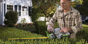 Top 10 Best Hedge Trimmers in 2019 Reviews