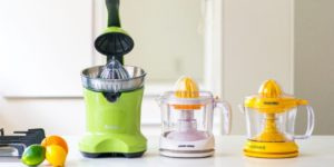 Best Stainless Steel Citrus Juicers Review In 2020